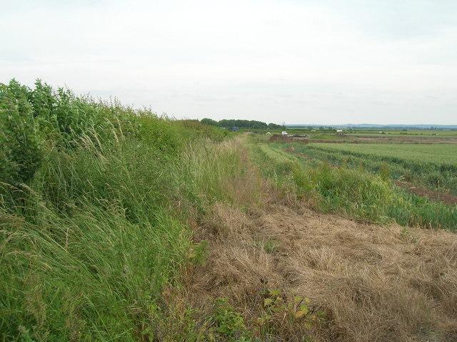 Footpath near Newton
