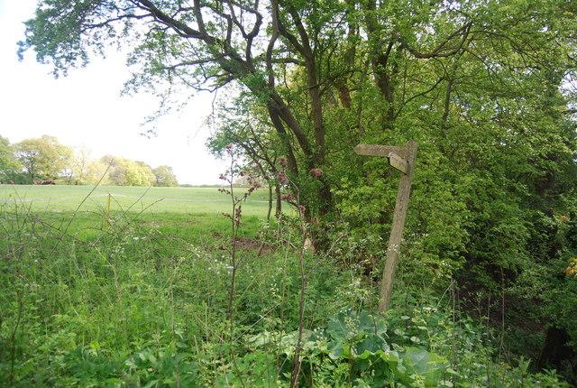 Fingerposts for the Sussex Border Path, Hammond's Farm
