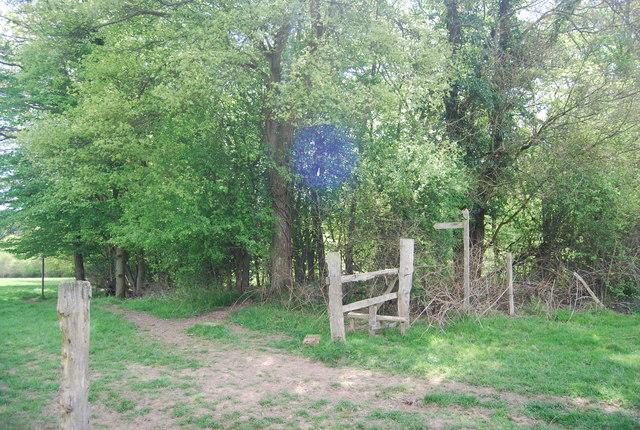 Redundant stile on the Sussex Border Path