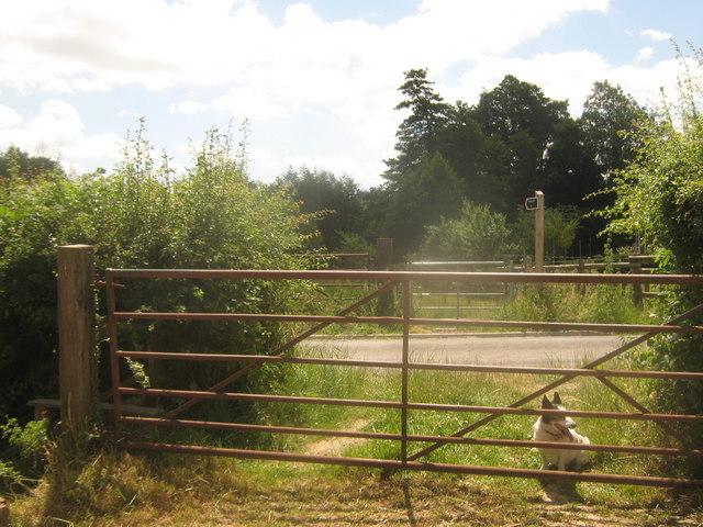 Footpath crosses Moat Lane
