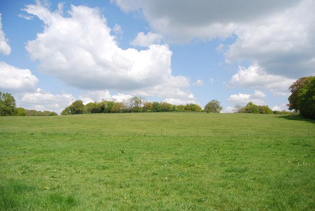 Farmland near the Sussex Border Path