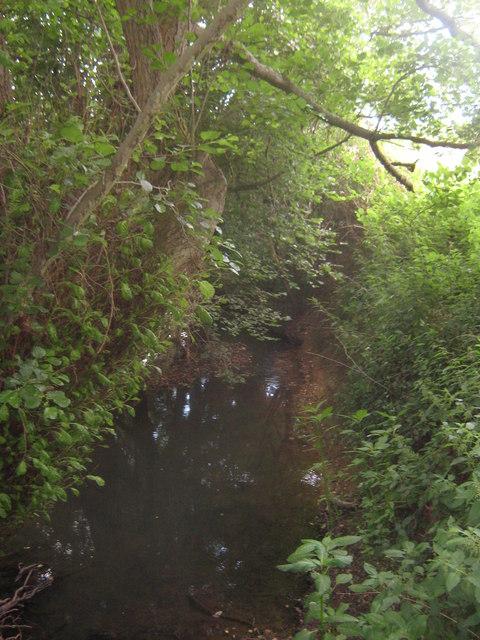 Kent Water near Moat Farm