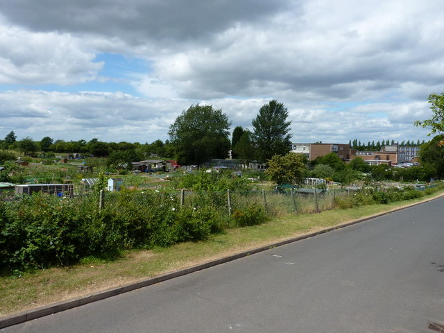 Boundary Road allotments