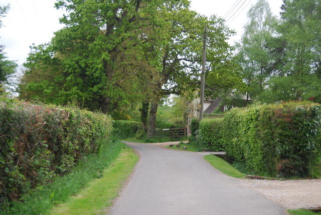 Wyatts Lane (Sussex Border Path)