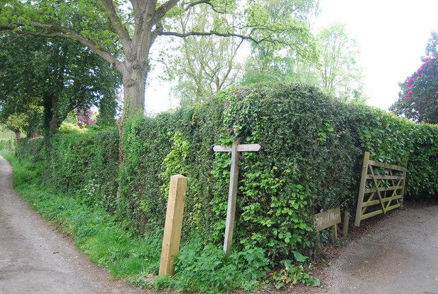 Sussex Border Path sign, Wyatt's Lane