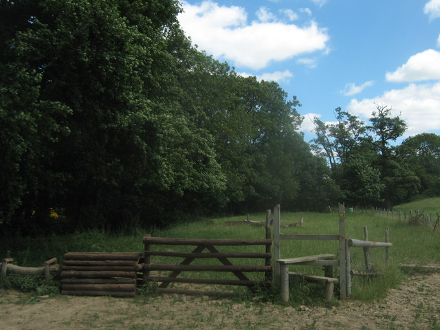 Do you use the stile or the horse jump ??