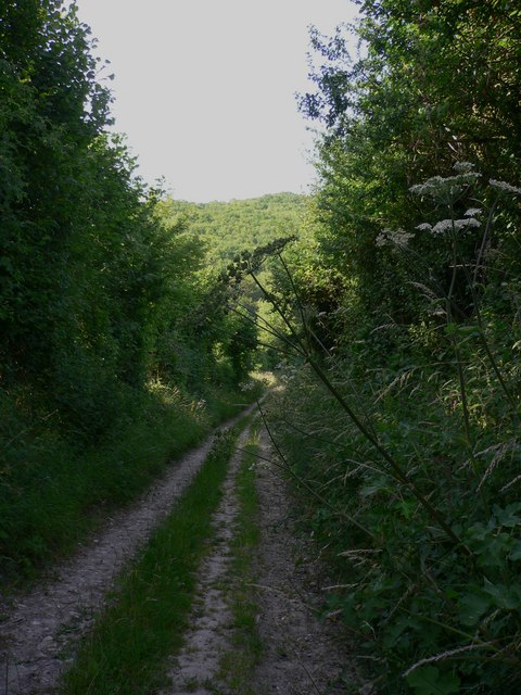 Byway south of Bepton