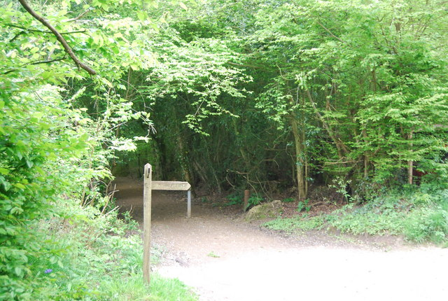 Footpath junction on the edge of Sandpits Wood