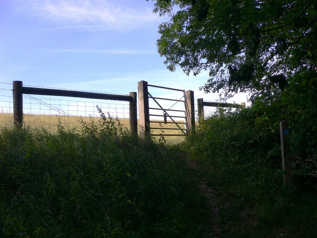 Bridleway leaves woodland on Bepton Down