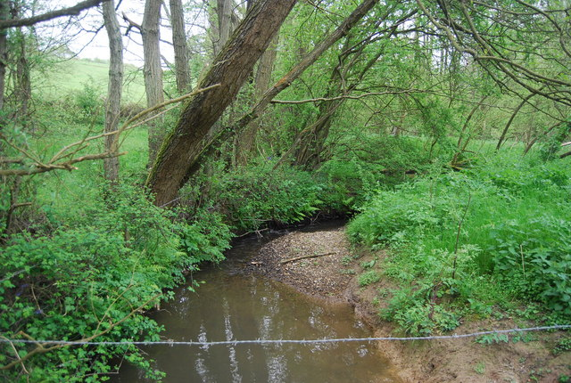 Danehill Brook