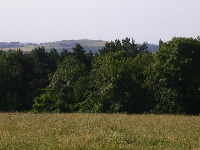 South Downs field