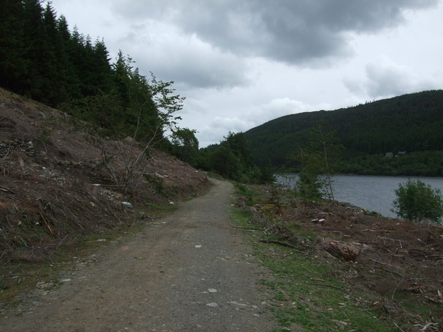 Track alongside Llyn Crafnant looking north east