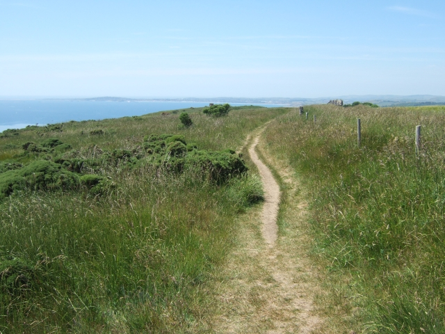 South West Coast Path in The Warren (looking west)
