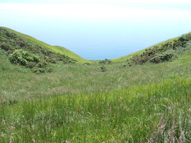 West Bottom, below the South West Coast Path