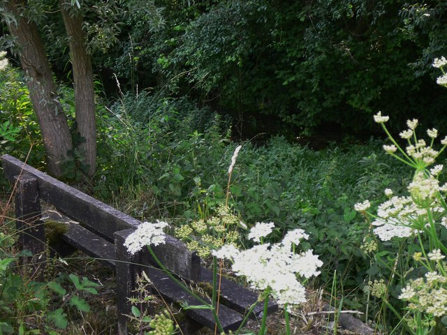 Seat between byway and stream near Crypt Farm