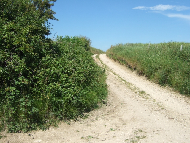 Bridleway leading to Holworth