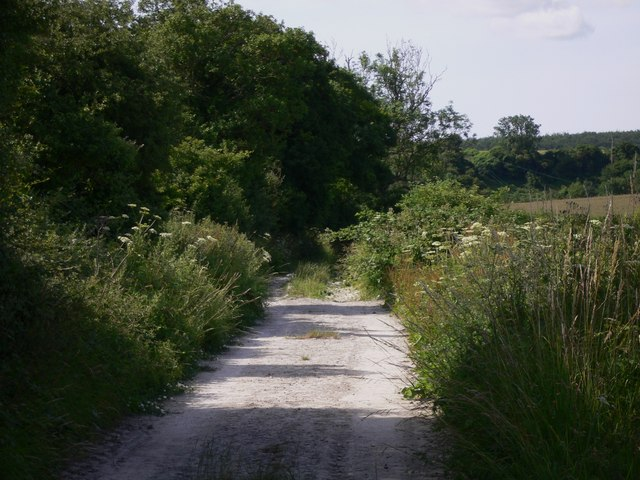 Byway going south from Cocking