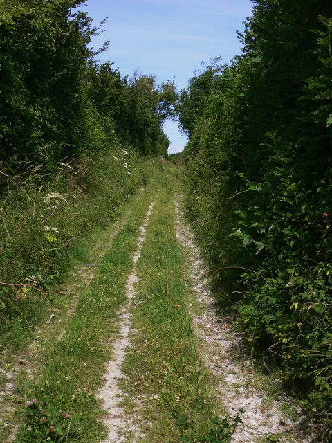 Henley Lane near Cocking