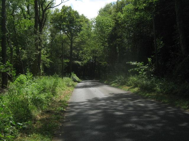Holtye Lane
