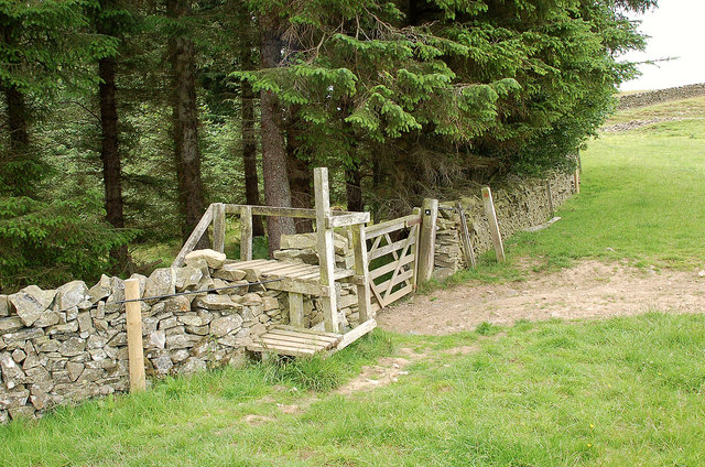 Stile at the top of Traquair Plantation, Philiphaugh