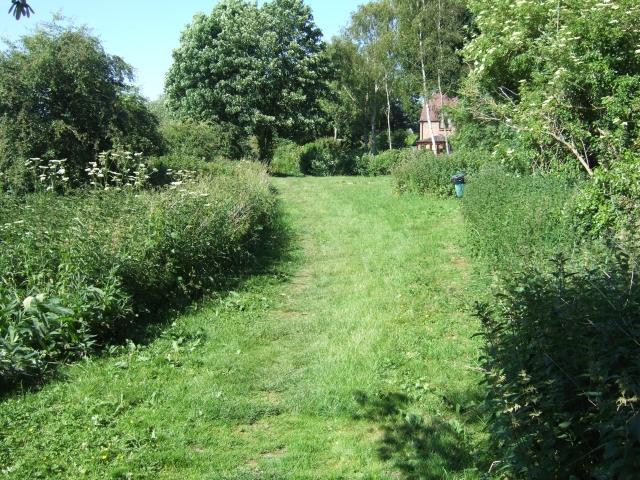 Winfrith Newburgh: riverside walk