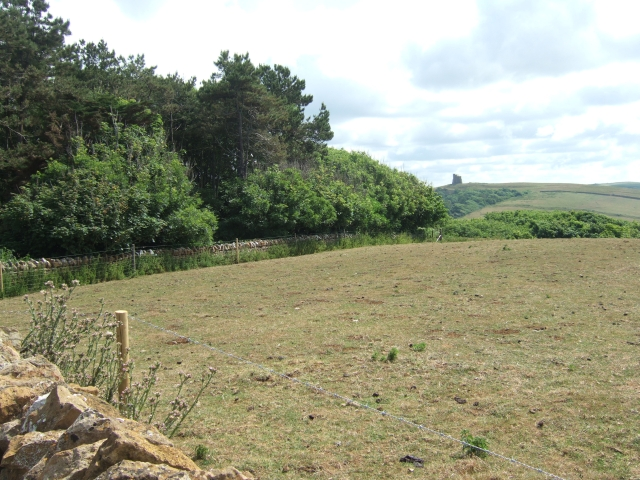 From the viewpoint, Abbotsbury subtropical gardens
