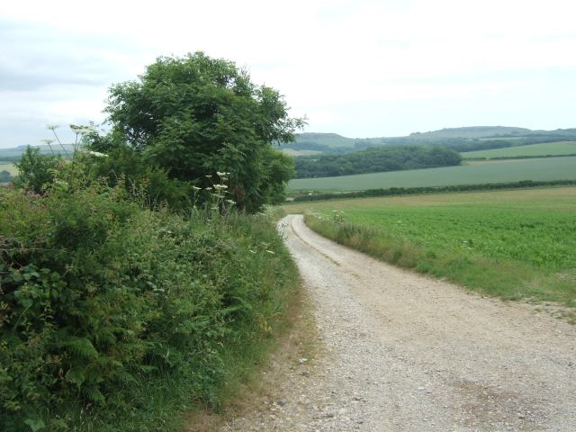 Farm track and footpath to Green Leaze