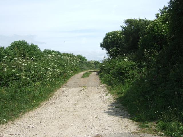 Farm track leading to fields east of Clay Lane