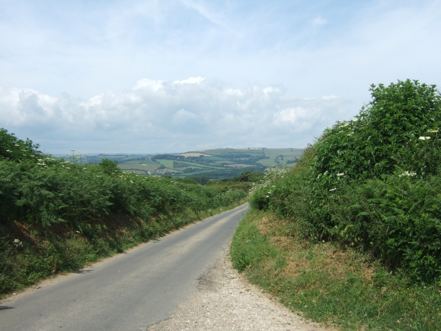 Clay Lane leading north to Puncknowle