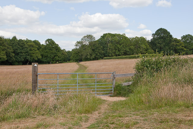 Footpath from Crampmoor to Green Lane
