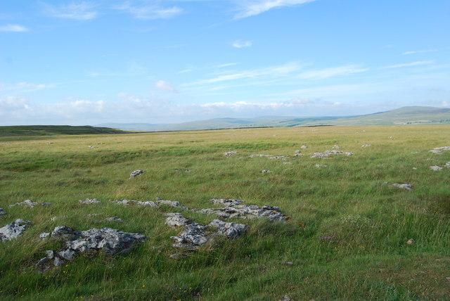 High upland limestone pasture