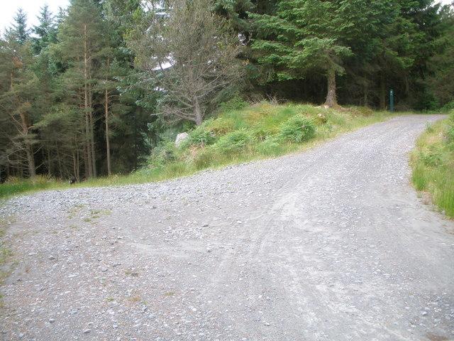 Road junction Ardgartan Forest