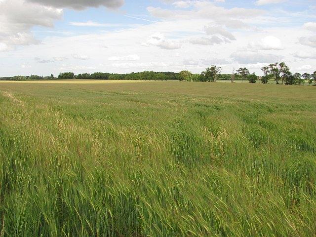 Arable land, Crosshall