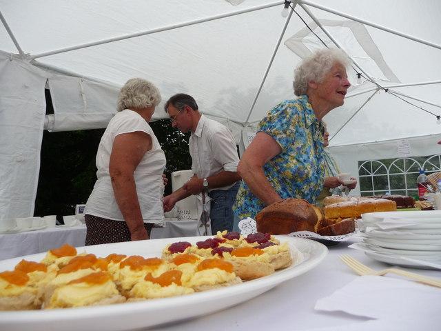 Puddington : Puddington Summer Fete - Cake Stall