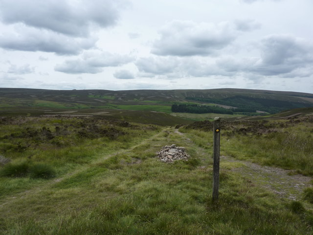 Looking down into Berry Clough