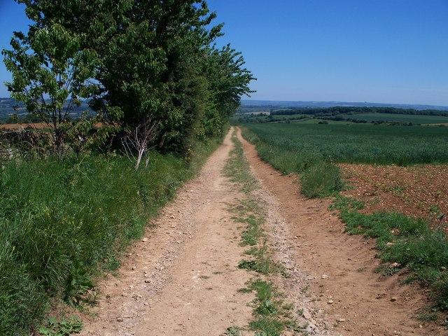 Down Campden Hill
