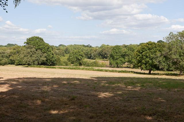 Fields north of Crampmoor Farm