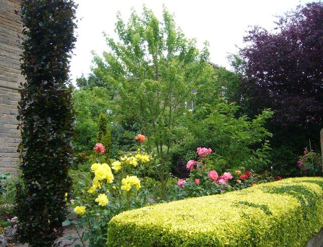 Abbotsford Crescent villa garden