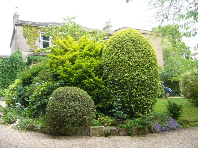 Tipperlinn topiary