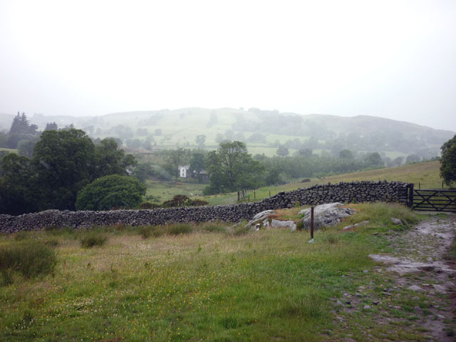 Dry stone wall above Aira Beck
