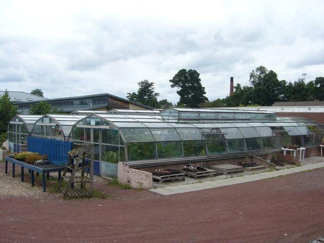 Horticulture project, Royal Edinburgh Hospital