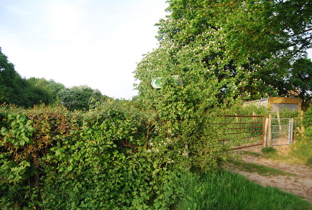 Footpath signpost in the bushes, Charcott