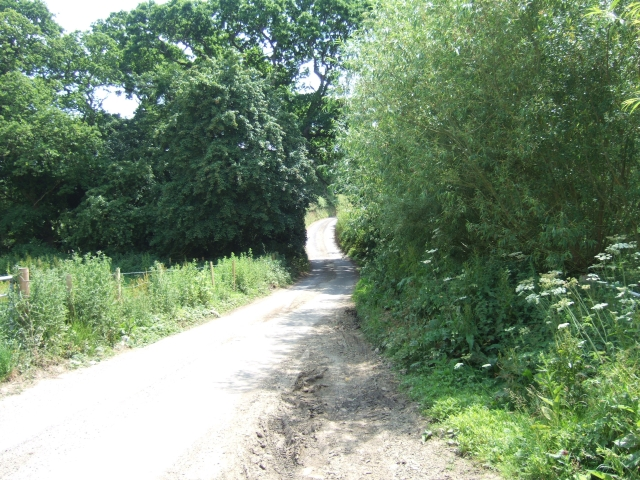 Minor road leading to Clayhanger and Puncknowle