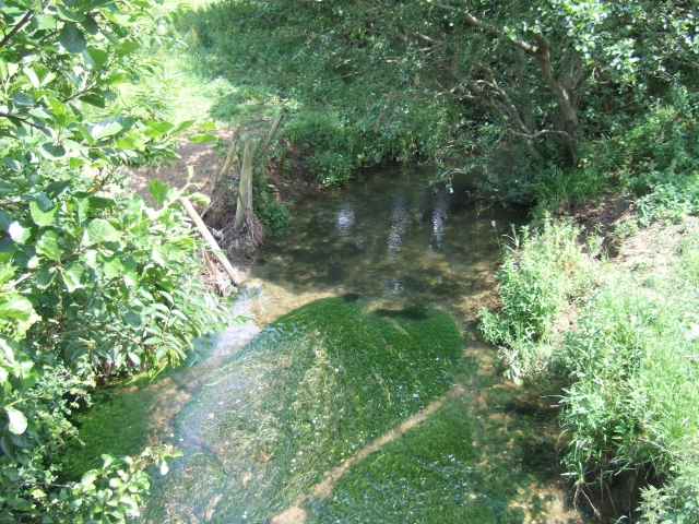 River Bride near Clayhanger