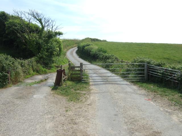 Chilcombe Lane cattle grid