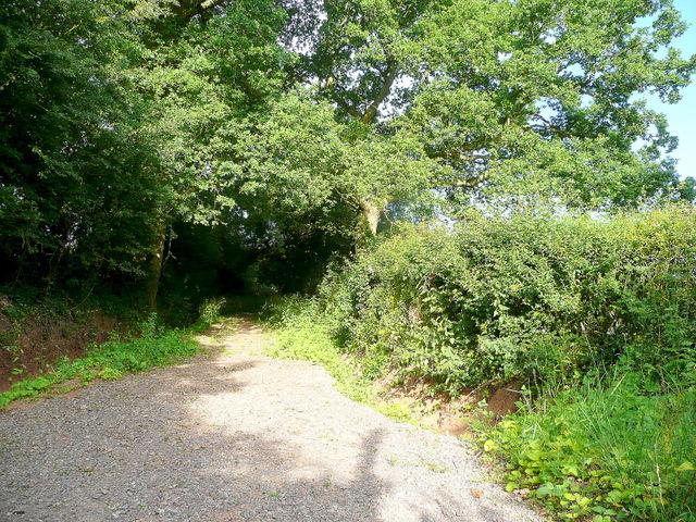 Footpath off Moat Lane, Staunton