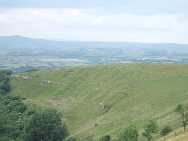 The west end of Eggardon Hill