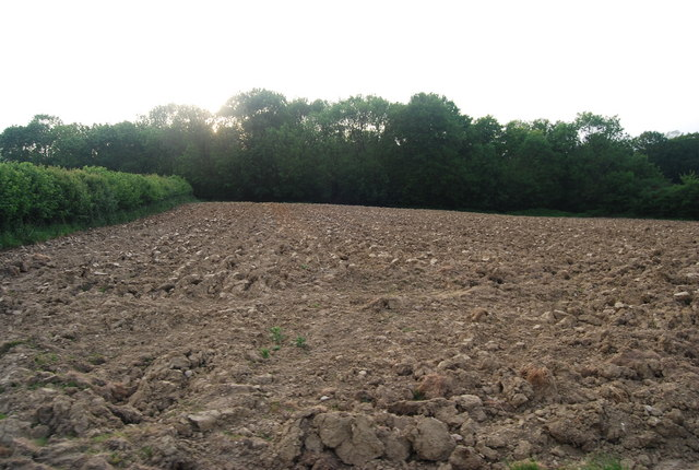 Ploughed field near Brownings Shaw