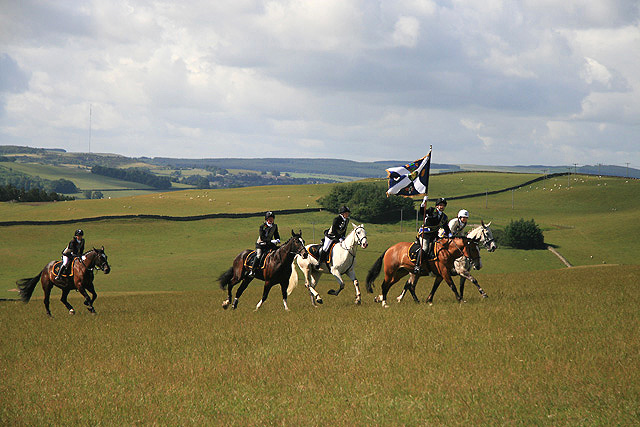The gallop over Gala Hill