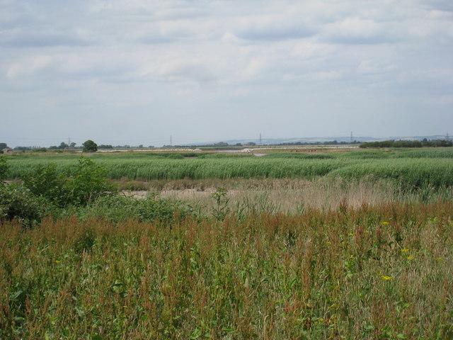 View towards the Clough, Alkborough Flats